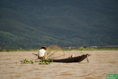 Inle-8