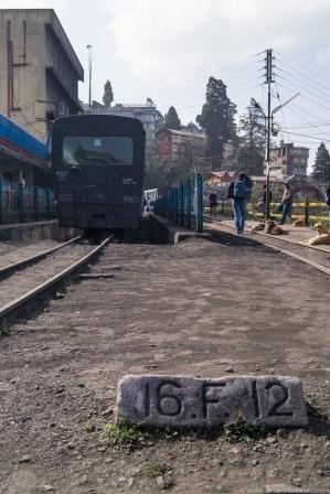 Darjeeling-41