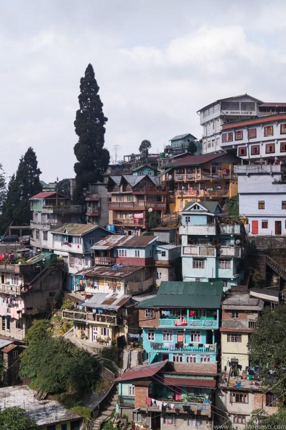 Darjeeling-62