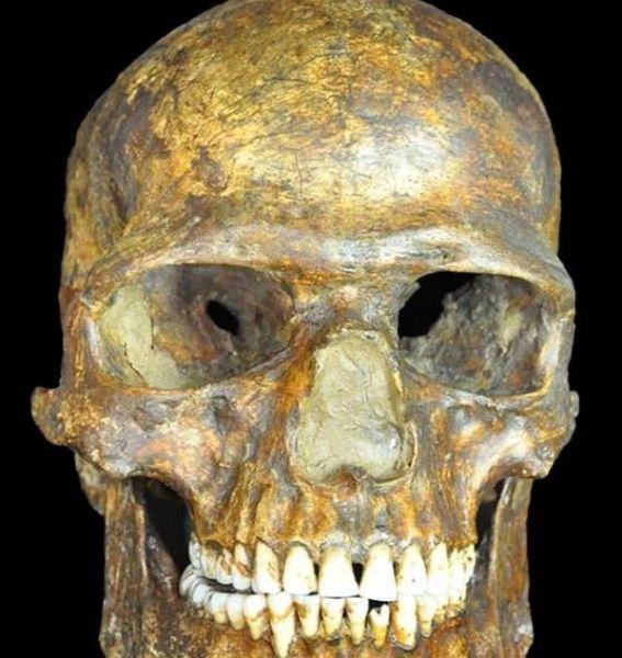 Cráneo hombre de Kostenki