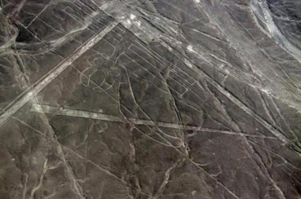 Investigadores han encontrado 24 nuevos geoglifos en Nazca.