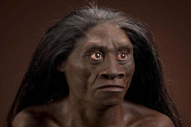 Homo floresiensis. Crédito: Wikimedia.