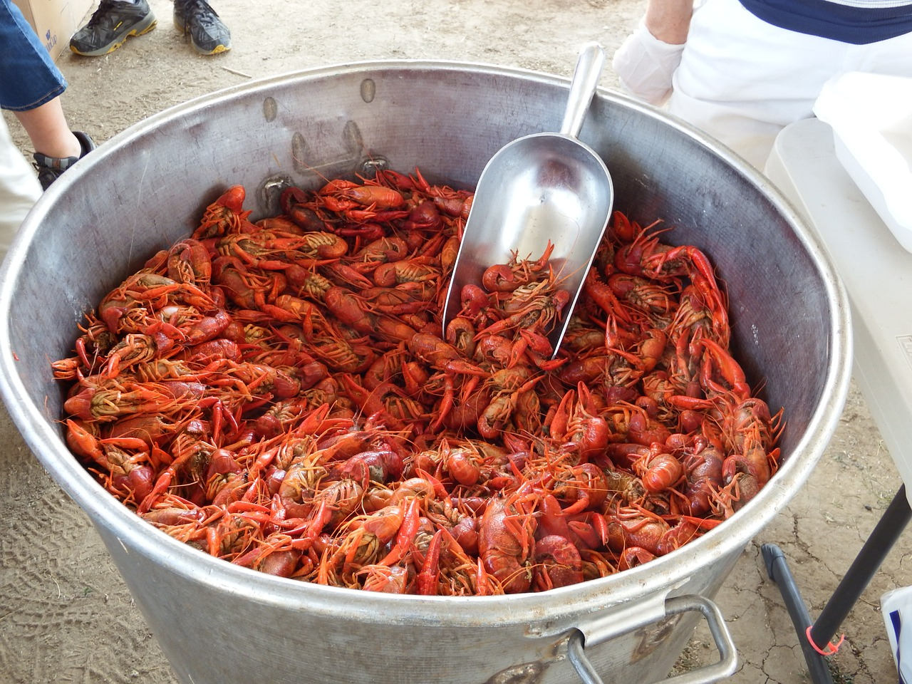 Flusskrebs Essen Louisiana Crawfish Boil Der Hit Auf Jeder Barbecue Party