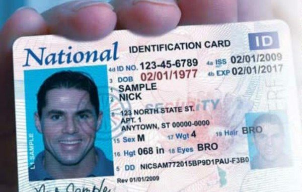 National Id Card Tucked In Immigration Bill - Redoubt News - sample id cards