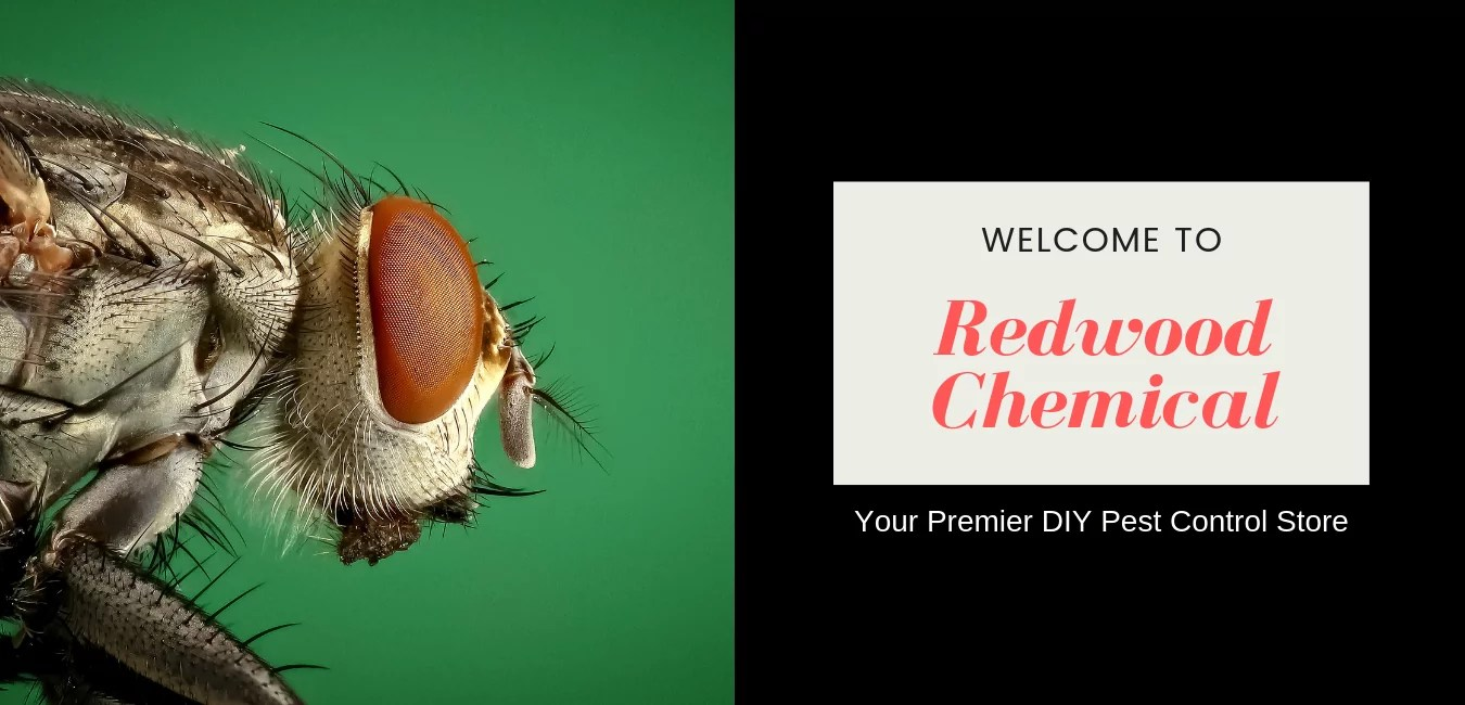 Diy Pest Control Supplies Redwood Chemical Do It Yourself Pest Control Products