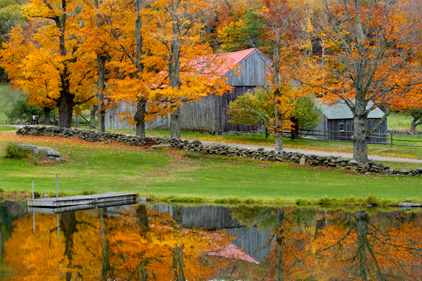 Fall Scenes Wallpaper With Pumpkins Fall In Vermont Donald Reese Photography