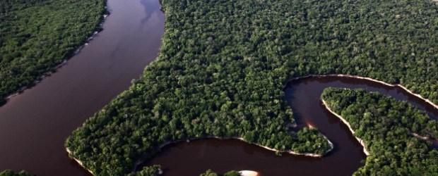 28.09.2010 - Parque Nacional do Jau