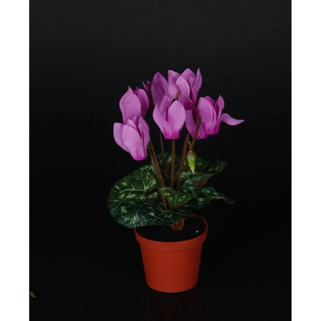 Entretien Cyclamen Cyclamen Mini Artificiel 21 Cm En Pot Plantes Fleuries