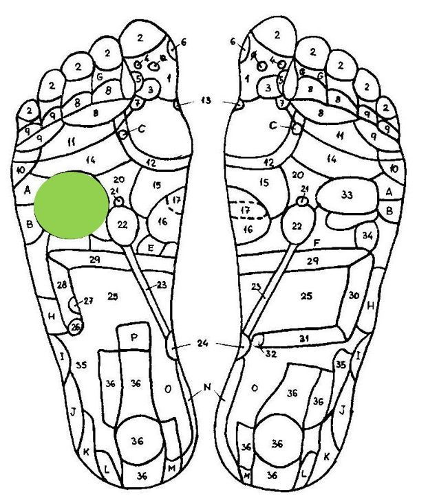 REFLEXOLOGY for WEIGHT LOSS - FREE Guide - ideal weight chart