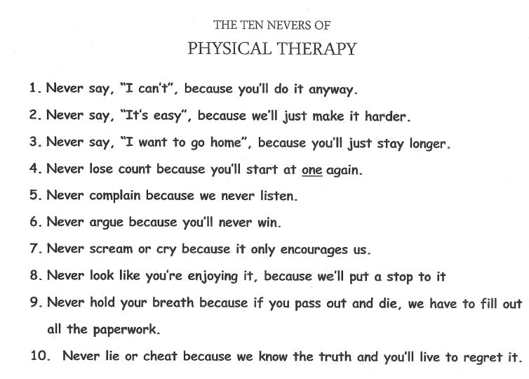Physical Therapy best written essays ever