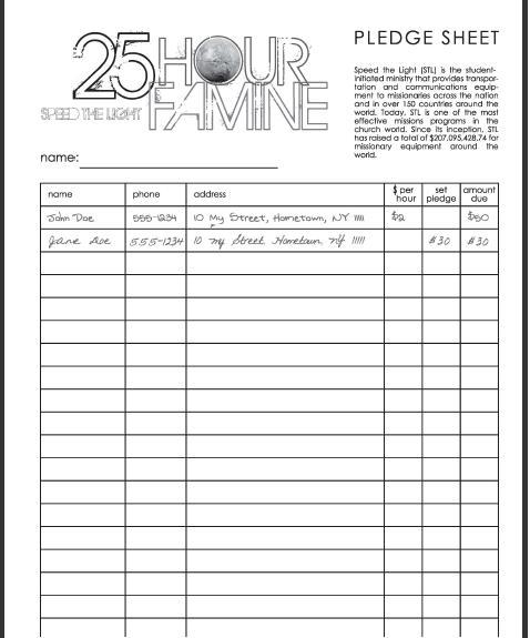 pledge sheet template - Romeolandinez