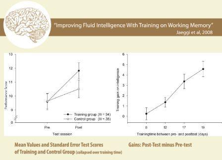 Sobre la inteligencia y la estupidez