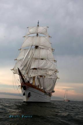 regata marii negre 2014 - parada velelor (35)