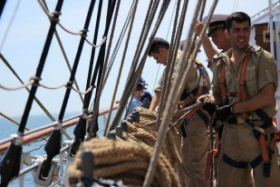 regata marii negre 2014 - parada velelor (61)