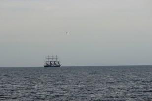 regata marii negre 2014 - parada velelor (92)