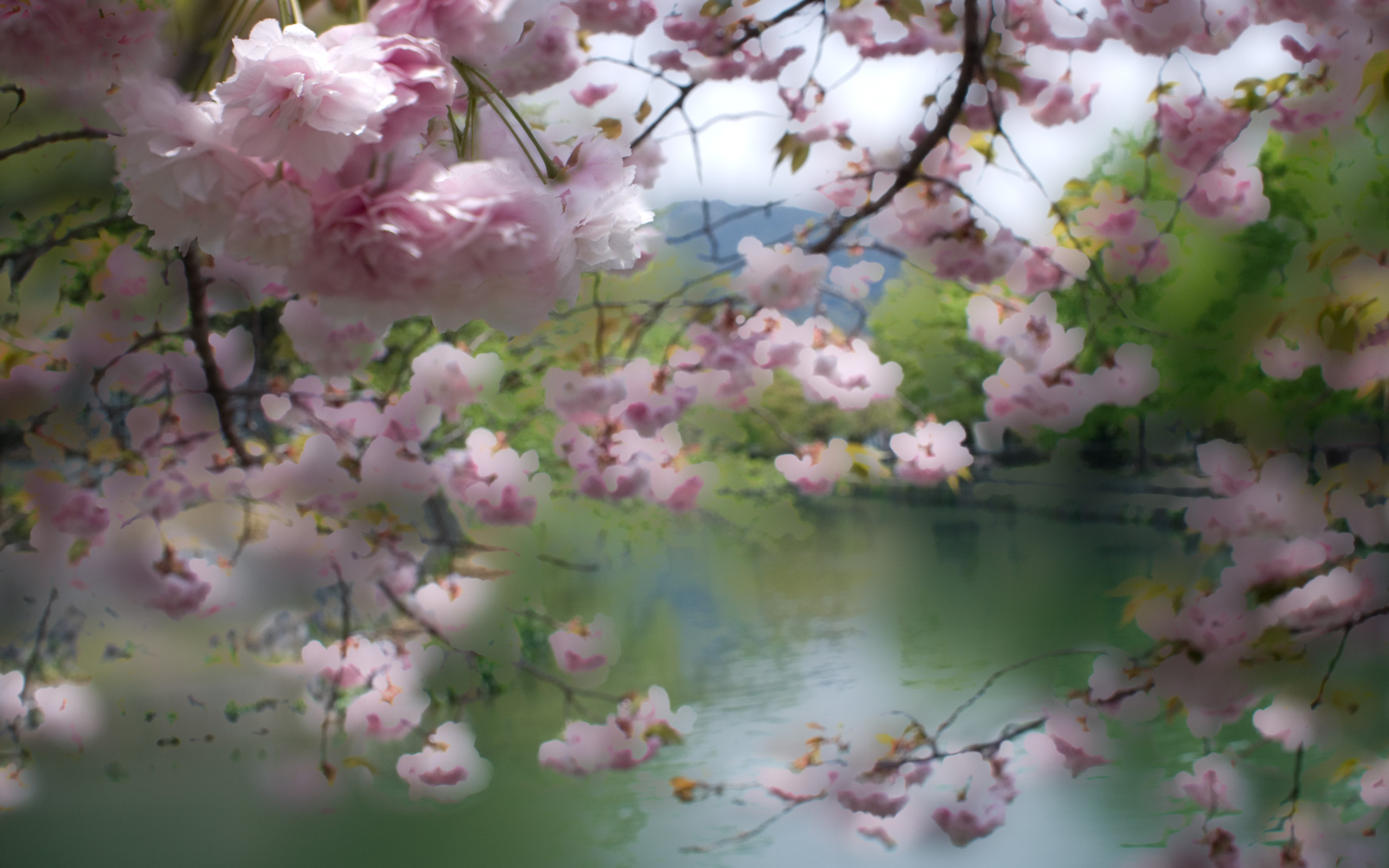 Fall Color Wallpaper For Desktop Jeffrey Friedl S Blog 187 Cooling Off With Pastel Cherry