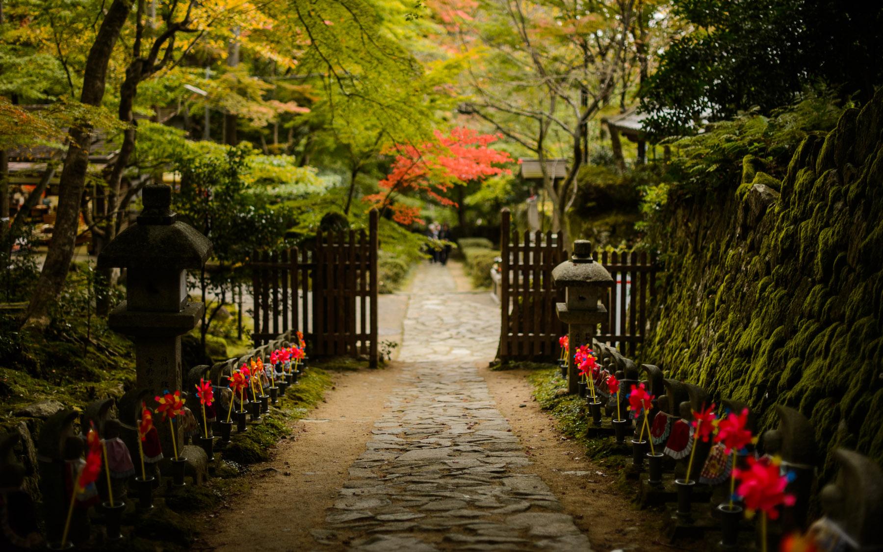 Japan Fall Wallpaper Jeffrey Friedl S Blog 187 Uncountable Sorrows Path Of