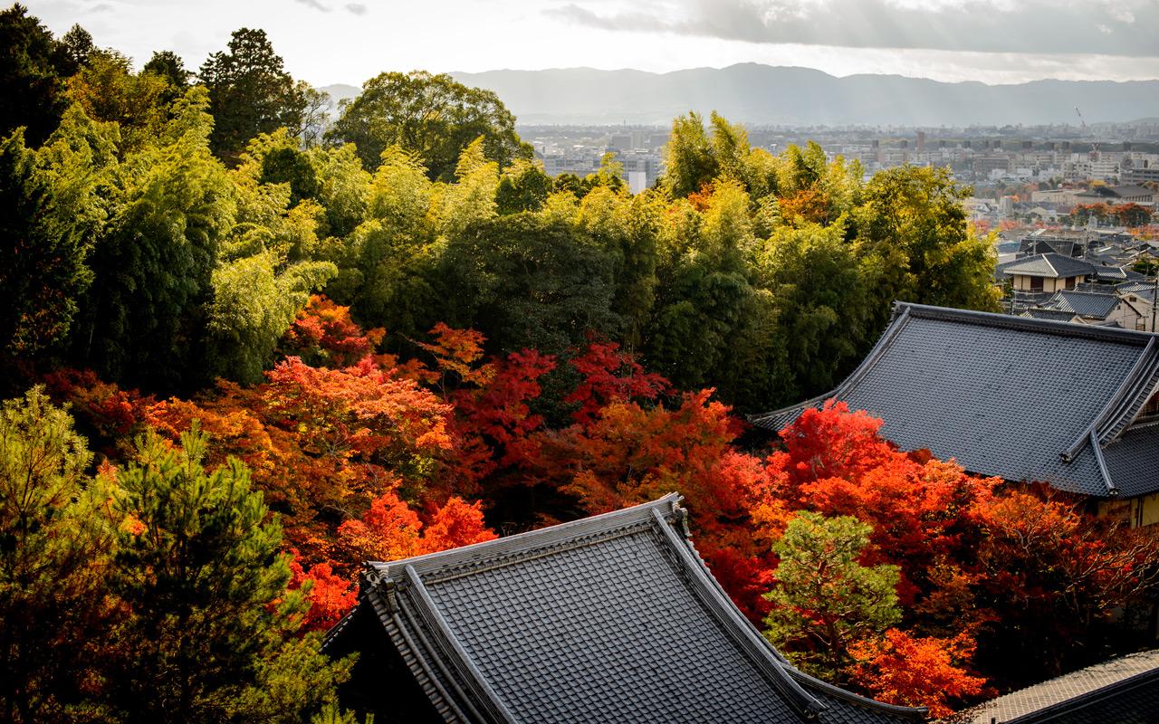 Free Fall Pictures Desktop Wallpaper Jeffrey Friedl S Blog 187 More Japanese Garden Desktop
