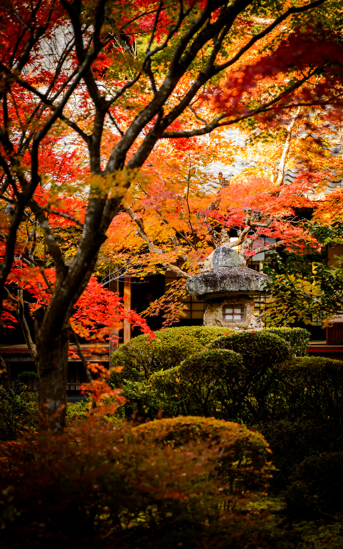 Desktop Wallpaper Fall Scenes Jeffrey Friedl S Blog 187 More Japanese Garden Desktop