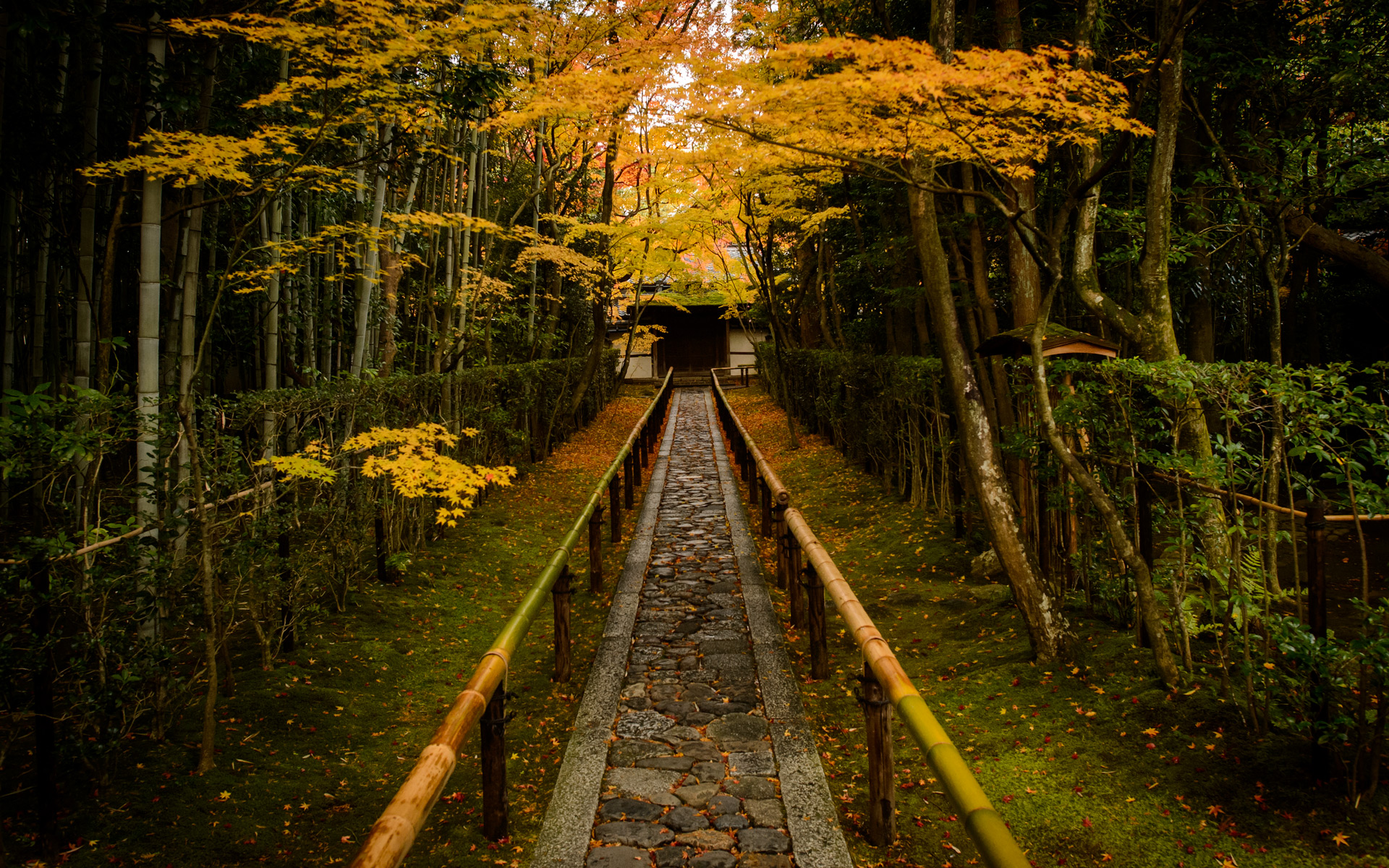 Fall Pictures For Desktop Wallpaper Jeffrey Friedl S Blog 187 That Amazing Entrance Path Of