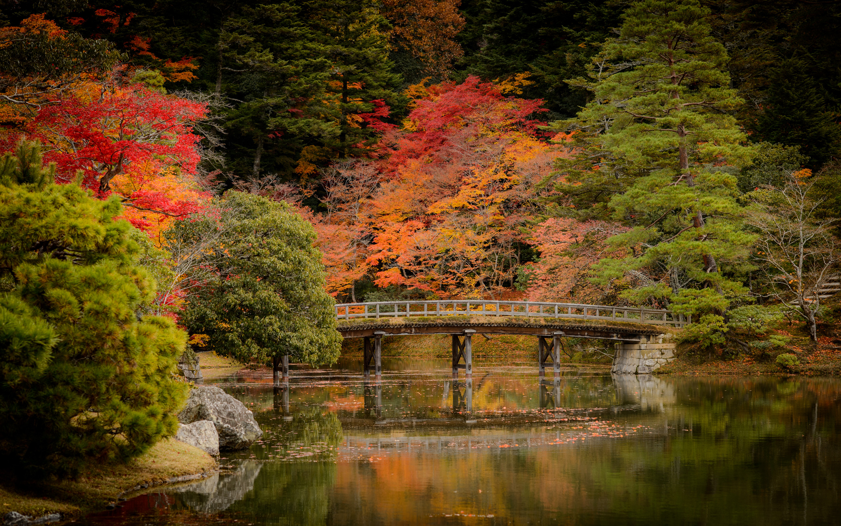 Free Fall Scripture Wallpaper Jeffrey Friedl S Blog 187 Revisiting Kyoto S Fall Colors