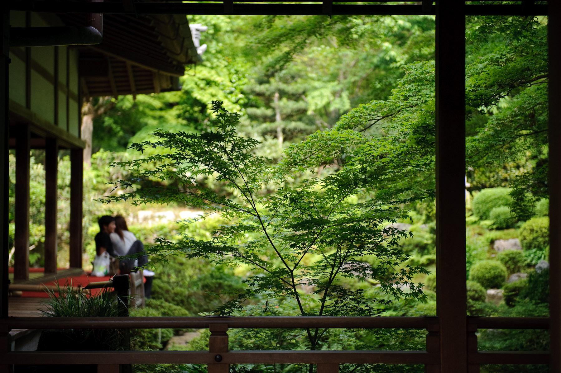Fall Foliage Wallpaper Widescreen Jeffrey Friedl S Blog 187 Serenity A New Old Desktop Background