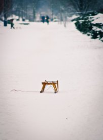 Schlitten ganz alleine im Schnee...