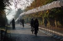 Lichtgrenze am Mauerpark