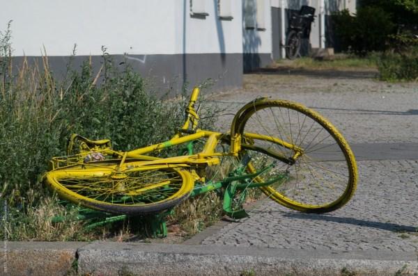 _K503877-Bikes