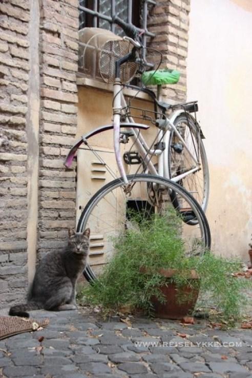 Gatebilde fra Monti Roma