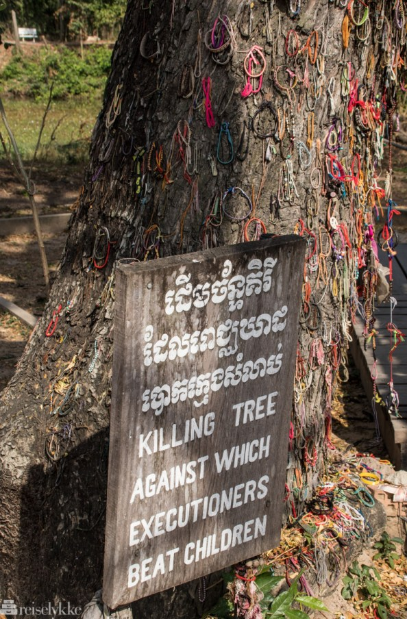 Killing Tree, Killing Fields, Phnom Penh