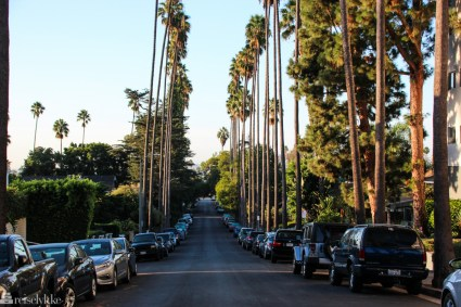 The streets of Los Angeles