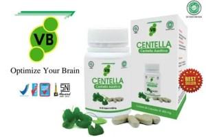 suplemen otak