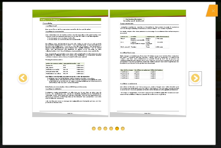 Download Business Plan templates - retail business plan essential parts