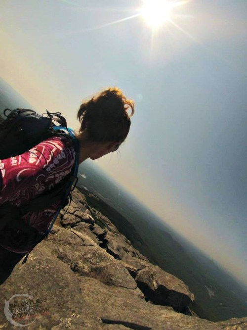 Monadnock Summit Heather