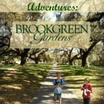 Myrtle Beach Outdoor Adventures: Brookgreen Gardens