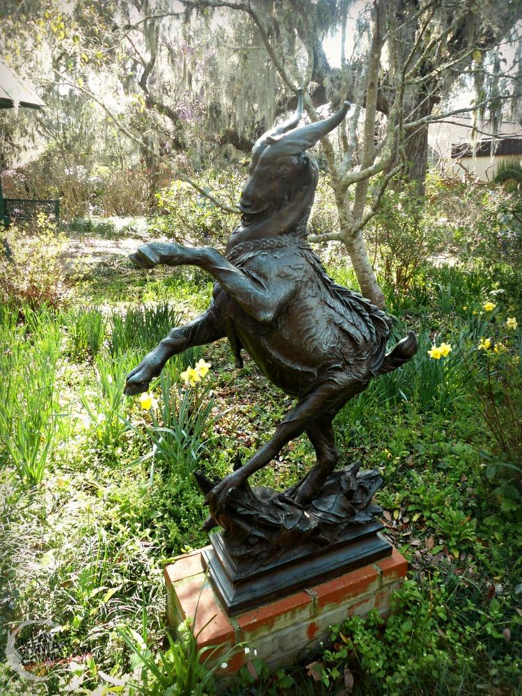 Goat Brookgreen Gardens