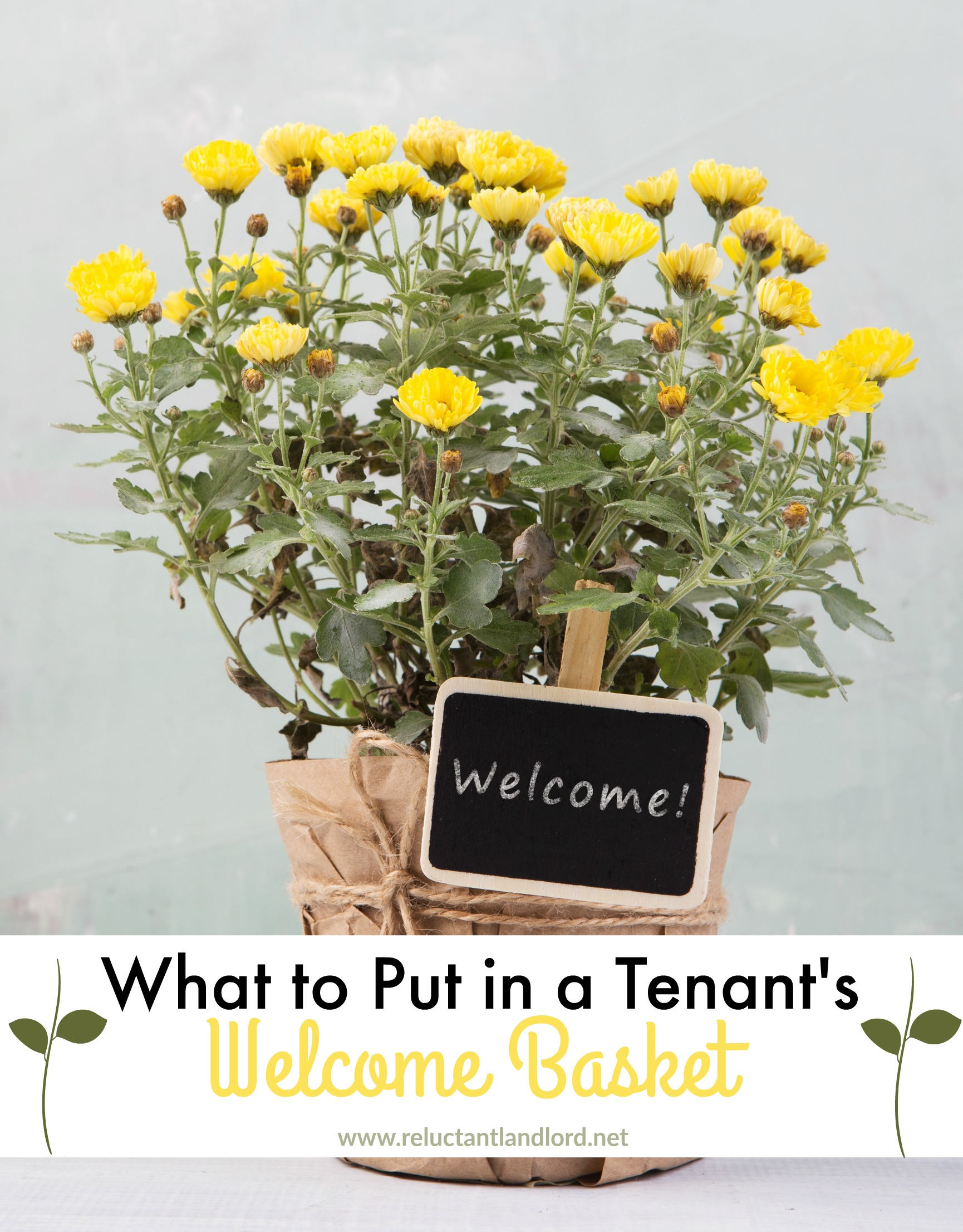 Gift Ideas For New Homeowner What To Put In A Tenant 39s Welcome Basket