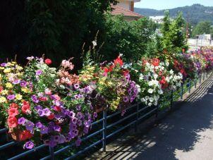 Des ponts magistralement fleuris