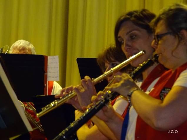 24 hautbois et flutes