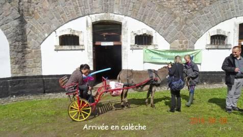 19 Caleche