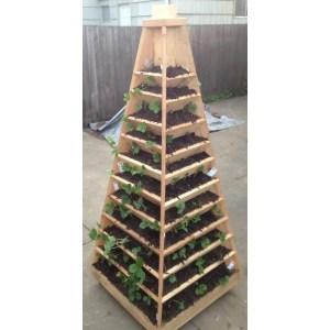 Top Your Next Diy Vertical Herb Garden Planter Box Vertical Herb Garden Plans Vertical Garden Pyramid How To Build A Vertical Garden Pyramid Tower