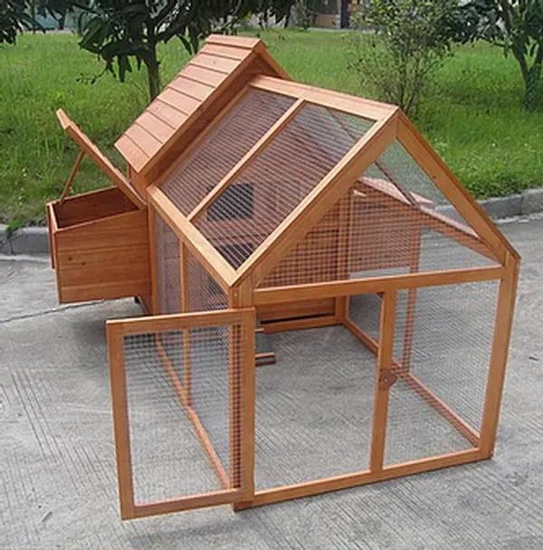 chicken coop ideas - design