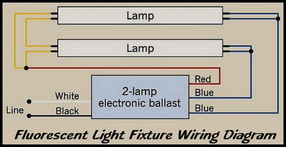 double fluorescent ballast wiring diagram