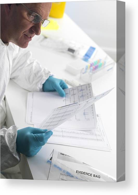 Forensic Science Canvas Print / Canvas Art by Tek Image