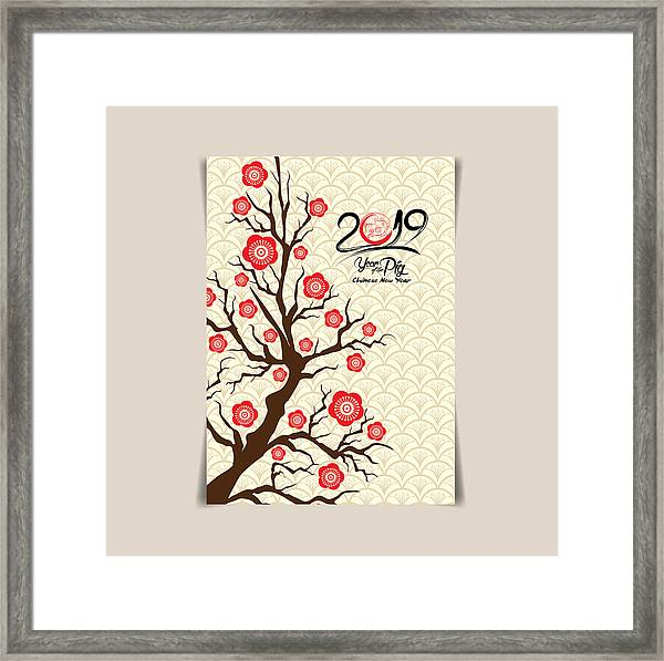 Chinese New Year Background White Blooming Sakura Branches On Red