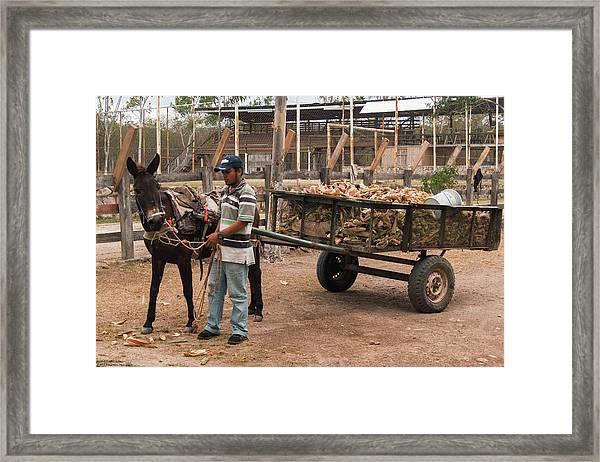 Behind The Scenes At Atolera Yoselin Framed Print by Hany J