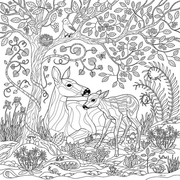 Deer Fantasy Forest Coloring Page Poster by Crista Forest