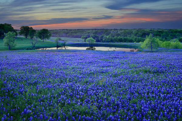 Bluebonnet Iphone Wallpaper Bluebonnet Lake Vista Texas Sunset Wildflowers Landscape