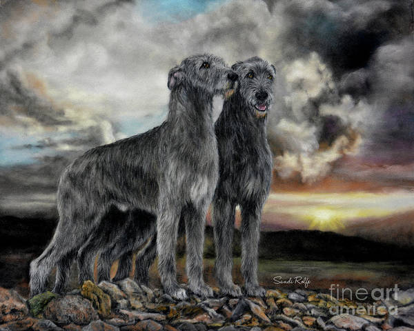 Wolf Wallpaper Iphone Irish Wolfhound Drawings Fine Art America